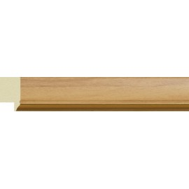 Багет пластиковый 138N.OAC.521